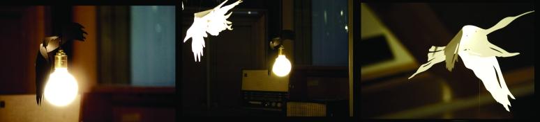 light bulb birds